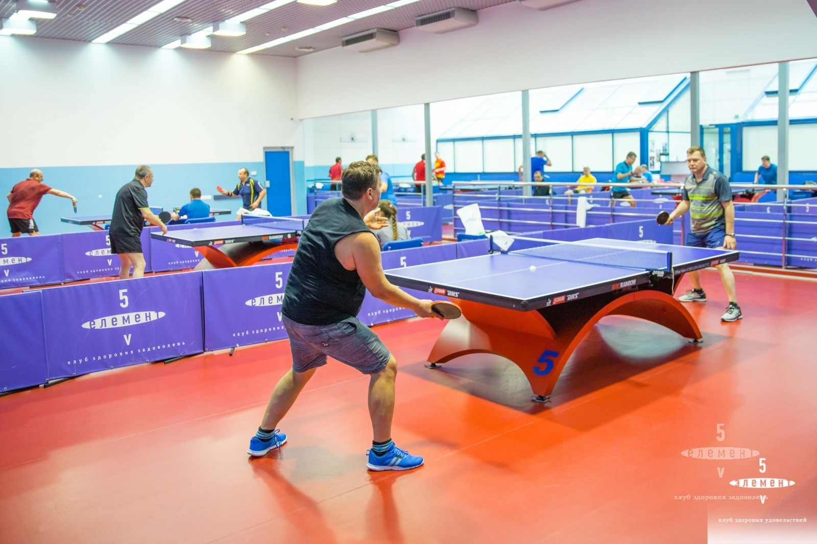 5 element table tennis series 2018— элитный семейный Фитнес-центр 5 Элемент