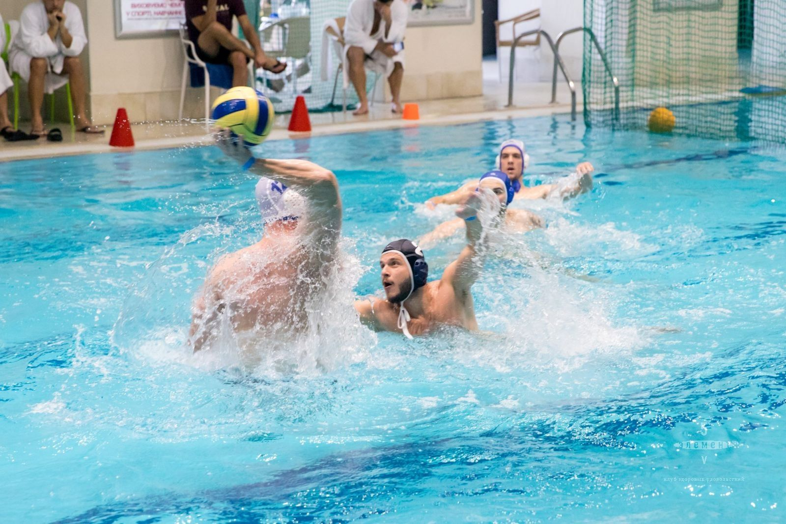 Открытый кубок клуба «5 элемент» по водному поло! — фитнес-клуб 5 элемент